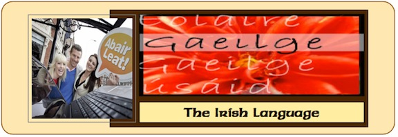 Irish Language Banner